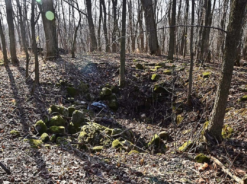 Strewn foundation rocks and a depression in the ground all that remain of a log cabin